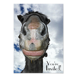 """Funny Horse Face for Party or  Equestrian Event 5"""" X 7"""" Invitation Card"""