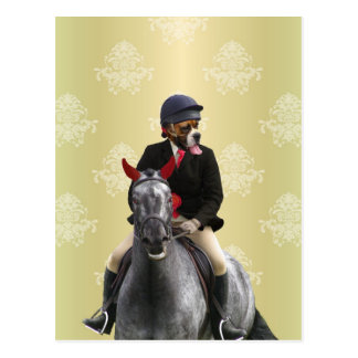 Funny horse rider character postcard