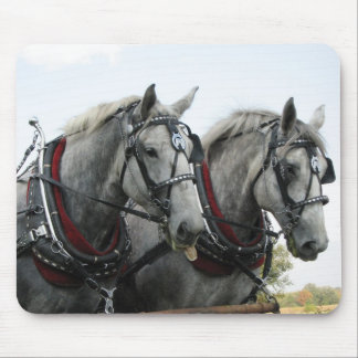 Funny Horses Mouse Pad