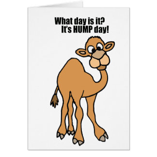 Funny Hump Day Camel Art Greeting Card