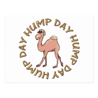 funny hump day camel post card