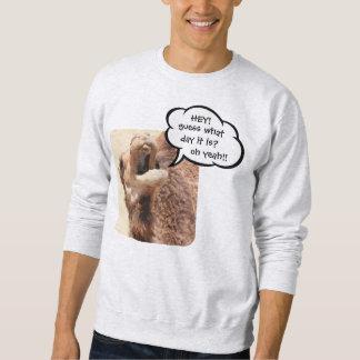 Funny Hump Day Shirt, Talking Camel Sweatshirt
