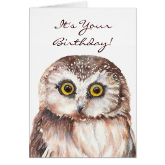 Funny If You Must be Genius, Old Age Owl Cards