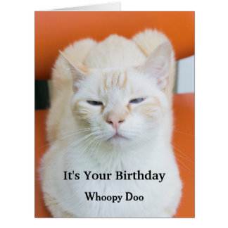 Funny Insulting Sarcastic Cat Birthday Card