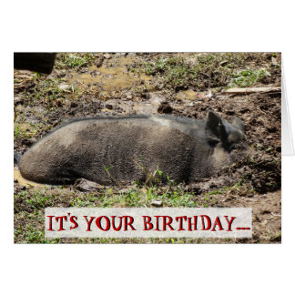 Funny It's Your Birthday Go Hog Wild Card