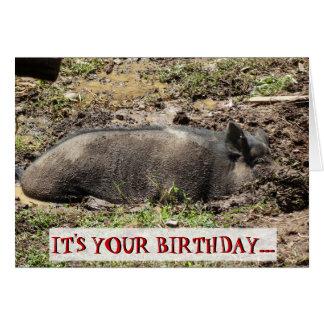 Funny It's Your Birthday Go Hog Wild Card