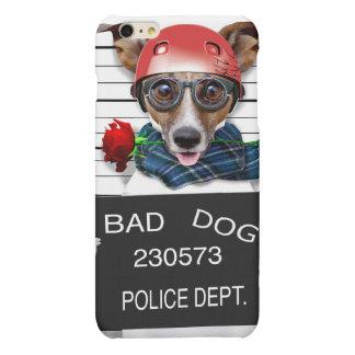 Funny jack russell ,Mugshot dog