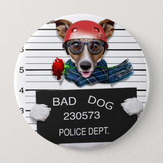 Funny jack russell ,Mugshot dog 4 Inch Round Button