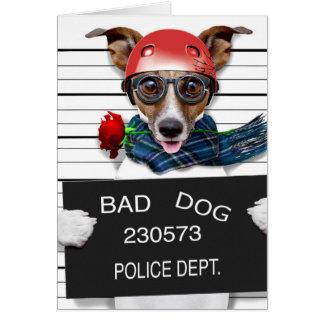Funny jack russell ,Mugshot dog Card