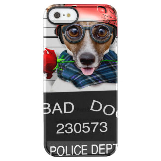 Funny jack russell ,Mugshot dog Clear iPhone SE/5/5s Case