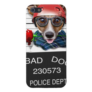 Funny jack russell ,Mugshot dog iPhone 5 Cases