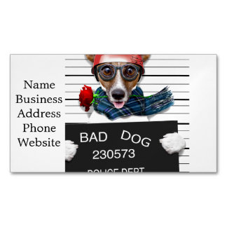 Funny jack russell ,Mugshot dog Magnetic Business Card