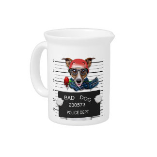 Funny jack russell ,Mugshot dog Pitcher