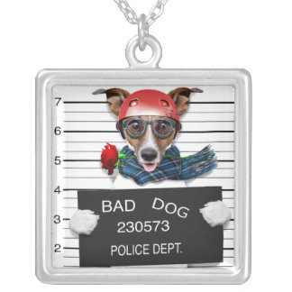 Funny jack russell ,Mugshot dog Silver Plated Necklace