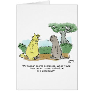 Funny Julius Katz the cat birthday greeting card