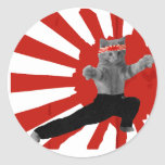 Funny Karate Kitten Stickers
