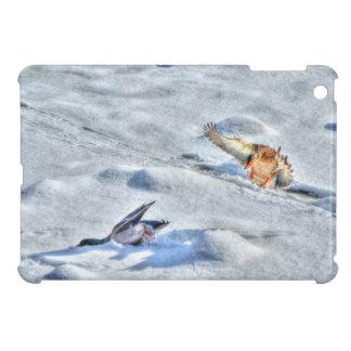 Funny Landing Mallard Duck & Drake Wildlife Photo iPad Mini Case