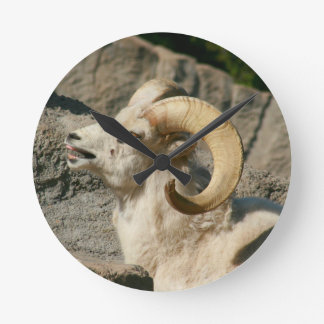 Funny Laughing Bighorn Sheep or Ram Wall Clock