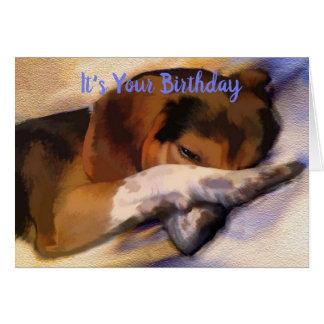 Funny Lazy Beagle Birthday Card