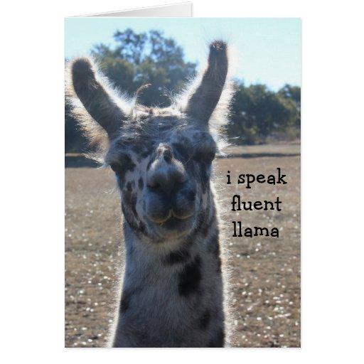 Funny Llama Birthday Card, I speak fluent llama...