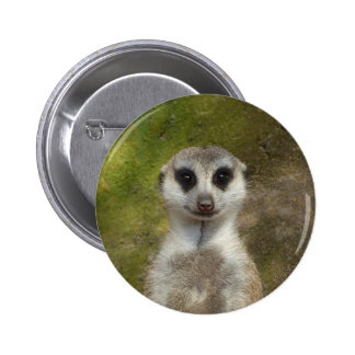 Funny Meerkat 002 02_rd 2 Inch Round Button