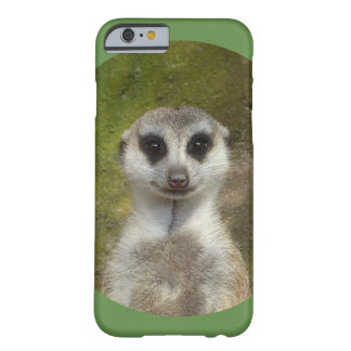 Funny Meerkat 002.03_rd Barely There iPhone 6 Case