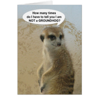 Funny Meerkat Groundhog Day Card