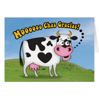 Funny MooooChas Gracias Cow Thank You Card