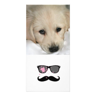 Funny Mustache and Sunglasses Photo Cards