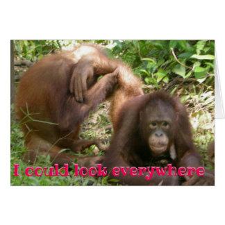 Funny Orangutan Valentine I Could Look Everywhere Card