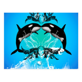Funny orcas with water splash post cards