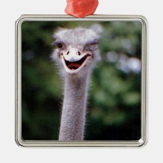 Funny Ostrich Silver-Colored Square Ornament