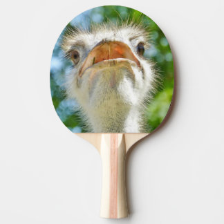 Funny Ostrich with Open Mouth Ping Pong Paddle