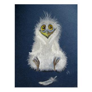 Funny owlet - baby bird post card