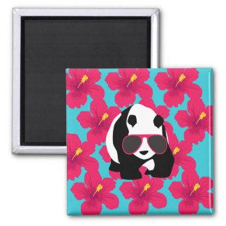 Funny Panda Bear Beach Bum Cool Sunglasses Tropics Magnet
