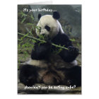 Funny Panda Birthday Card, Eat Cake, not bamboo! Card