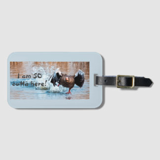 Funny Photo Black Goose Running Away on Water Luggage Tag