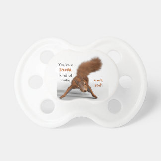 Funny Photo of Red Squirrel   Special Kind of Nuts Pacifier