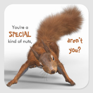 Funny Photo of Red Squirrel | Special Kind of Nuts Square Sticker