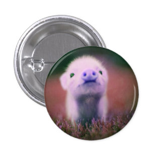 funny pig 1 inch round button