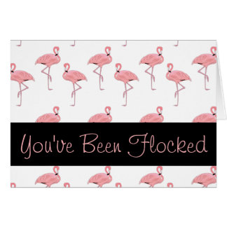 funny pink flamingo flocking card