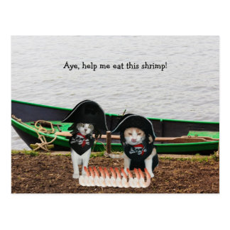 Funny Pirate Cats Post Cards