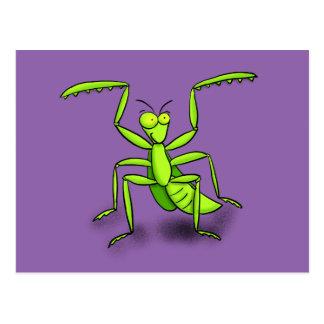 Funny praying mantis cartoon postcard