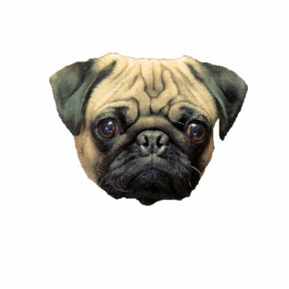 Funny Pug Photo Sculpture Keychain