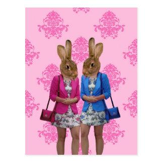 Funny rabbit girls going shopping postcard