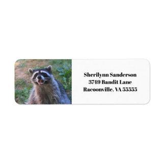 Funny Raccoon Photograph