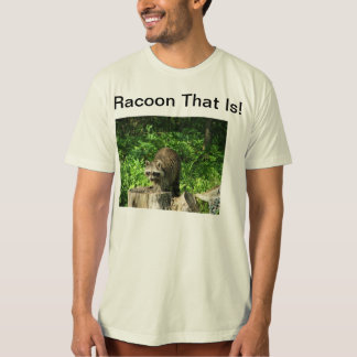 Funny Raccoon Shirt Front And Back