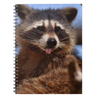 Funny Raccoon Sticking It's Tongue Out Spiral Notebook