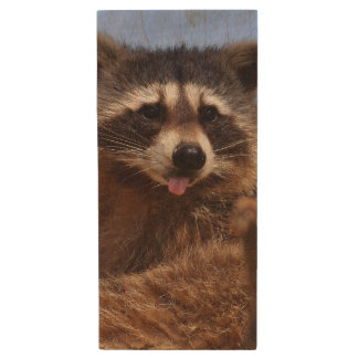 Funny Raccoon Sticking It's Tongue Out Wood USB Flash Drive