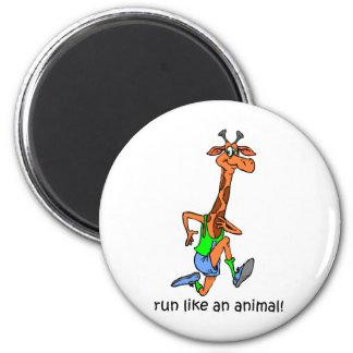 Funny running magnet